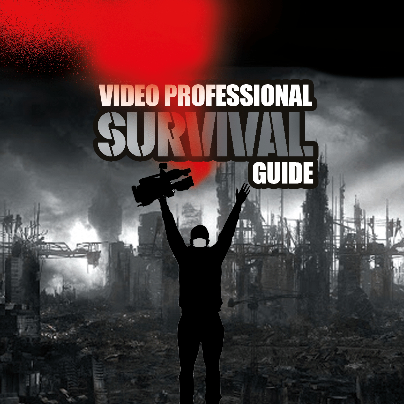 Survival options for video professionals